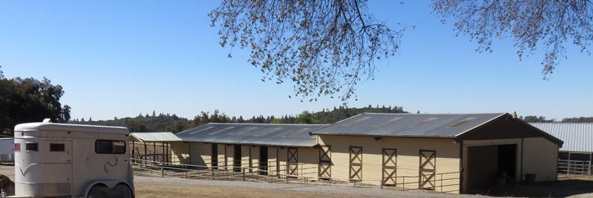 La Vida Buena Ranch